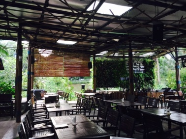 Natural Bamboo Blinds for Cafes